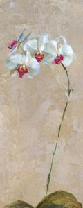 Contemporary Orchid II by Dennis Carney