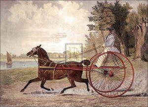 Lady Hampton by John Frederick Herring