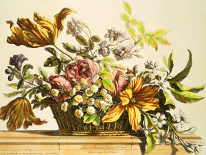 Basket Of Flowers I by Jerome Baptiste