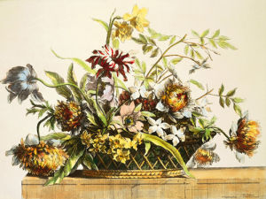 Basket Of Flowers II by Jerome Baptiste