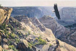 Bald Eagle over Canyon de Chelley by Dino Paravano