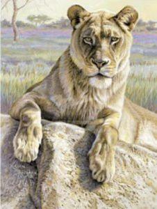 Serengeti Lioness by Kalon Baughan