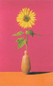 Yellow Sunflower by Azank