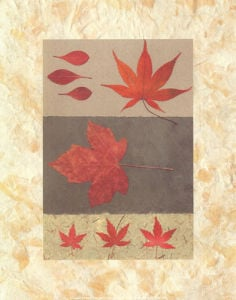 Red Maple by Denise Duplock
