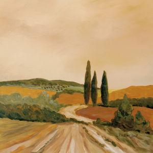 Shady Tuscan Fields by Joe Clark