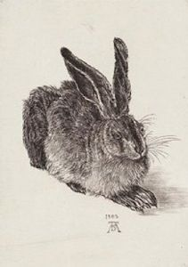 The Hare by Albrecht Dürer