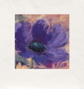 Minuetta-Blue Poppy (2000) by Nel Whatmore