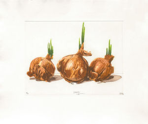 Onion Trio, 2000 by Robert C. Rore