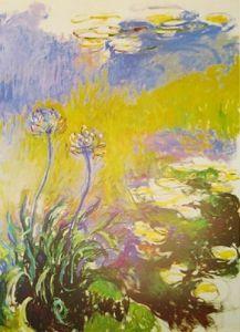 Agapanthus by Claude Monet