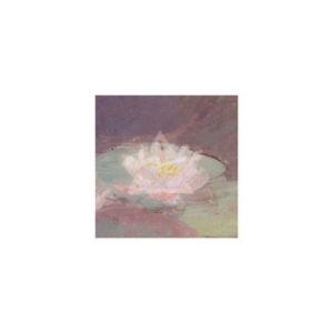Le ninfee rosa, 1897-98 (detail II) by Claude Monet