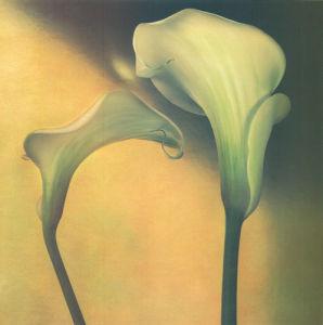 Calla Lily III by Carnochan