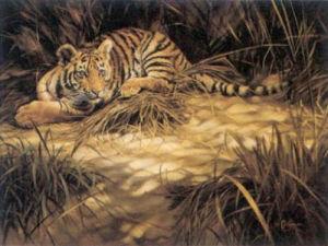 Tiger Mischief by Ian Coleman