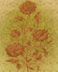 Amalia Roses by Mali Nave