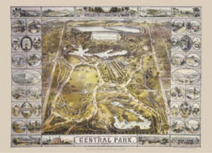 Central Park by Bachmann