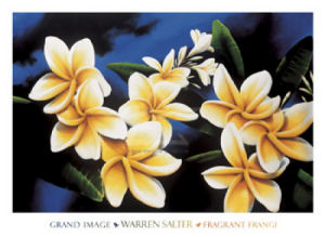 Fragrant Frangi by Warren Salter