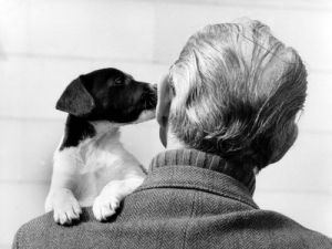 Dog kissing a man's ear by Walter Sittig