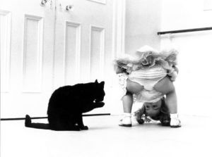 Girl peering through her legs at a cat by John Drysdale