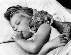 Lion cub and girl asleep by John Drysdale