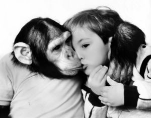 Chimpanzee kissing a little boy by John Drysdale