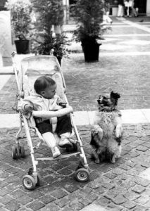 Dog entertaining a child by Gerd Pfeiffer