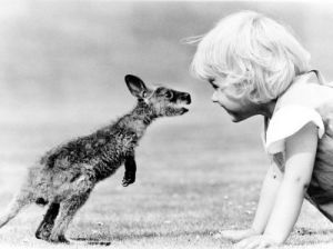 Baby kangaroo and girl by John Drysdale