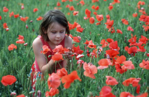Girl in poppy field by Gerd Pfeiffer