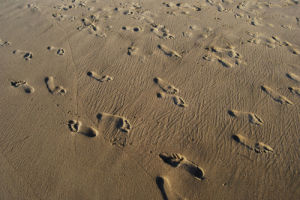 Footprints on the beach by Gerd Pfeiffer