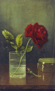 The Queen Of Roses by Martin Johnson Heade