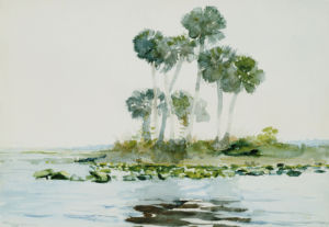 St. Johns River, Florida, 1890. by Winslow Homer