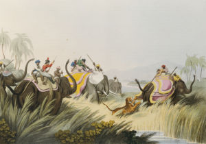 The Tiger At Bay, 1819 by Christie's Images