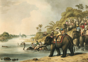 Chasing A Tiger Across A River, 1805 by H Merke