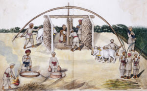 Sugar Cane Pressing. Kutch School, Circa 1840 by Christie's Images