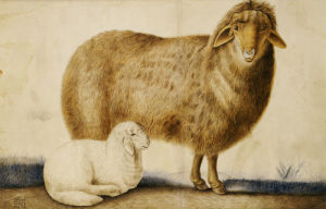 A Ewe And Her Lamb, Persia, C. 1850 by Abu'l Hasan Ghaffari