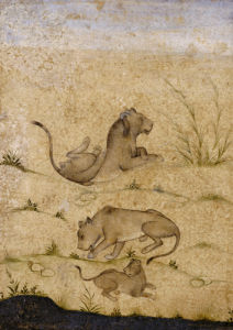 A Family Of Lions. Mughal, C. 1620 by Christie's Images
