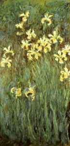 Yellow Irises by Claude Monet