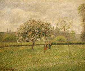Apple Tree Blossom At Eragny, 1888 by Camille Pissarro