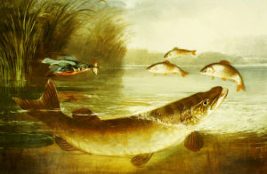 A Kingfisher And A Pike Capturing Perch by Henry Leonidas Rolfe