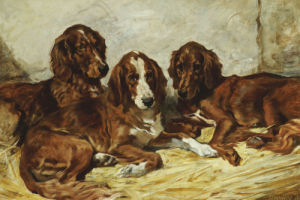 Shot And His Friends - Three Irish Red And White Setters, 1876 by John Emms