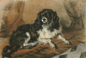 A King Charles Spaniel by Sir Edwin Henry Landseer