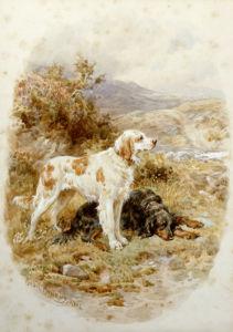 An English And A Gordon Setter by Basil Bradley