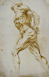 Anatomical Study: A Nude Striding To The Right His Hands Behind His Back by Peter Paul Rubens
