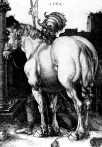 The Large Horse, 1509 by Albrecht Dürer
