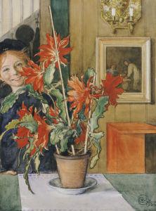 Brita's Cactus, 1904 by Carl Larsson