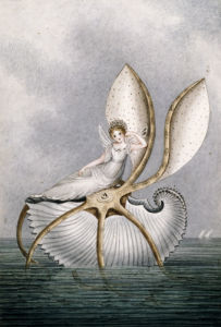 A Fairy Resting On A Shell by Amelia Jane Murray Lady Oswald