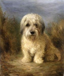 A Dandie Dinmont by Lilian Cheviot