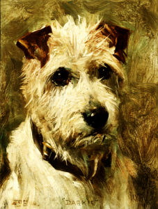 Portrait Of A Terrier: Darkie, 1903 by John Emms