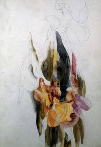 Iris by Charles Henry Demuth