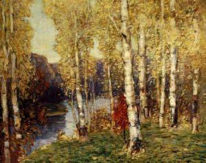 Birches by Paul King