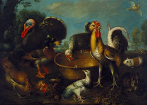 A Turkey, Duck, Rooster, Guinea Pig, And Rabbit by Genoese School