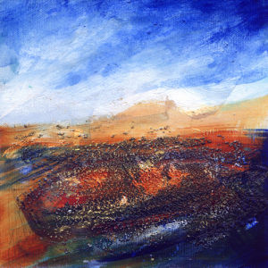 Wild Shore by Lesley Birch